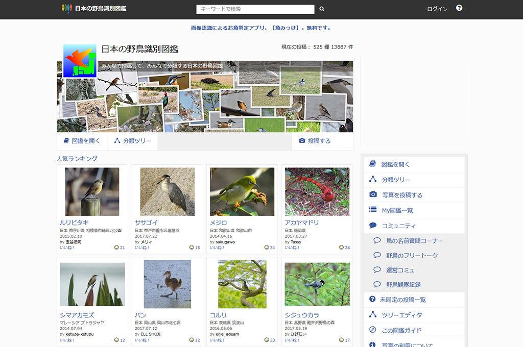 日本 の 野鳥 識別 図鑑